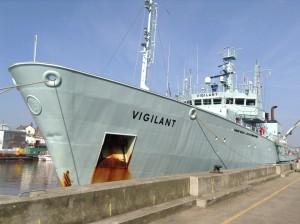 MV Vigilant van Tranship